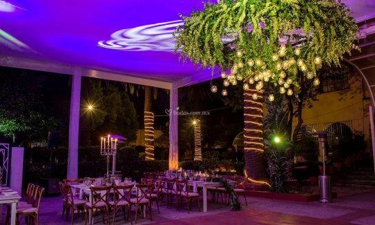 Jardín  Coyoacán